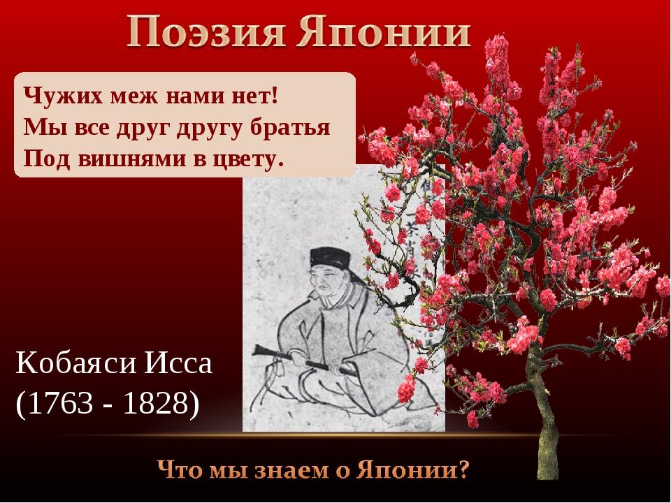 Чужих меж нами нет! Мы все друг другу братья Под вишнями в цвету. Кобаяси Исс...