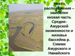 Место расположения – наиболее низкая часть Средне-Амурской низменности и низ