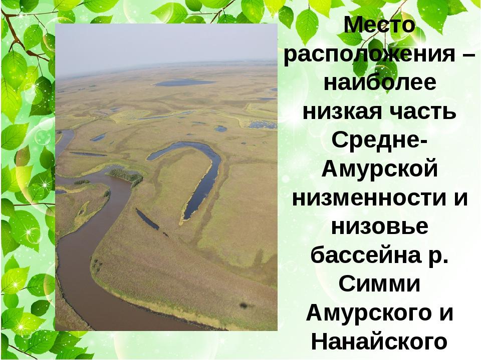 Место расположения – наиболее низкая часть Средне-Амурской низменности и низ...