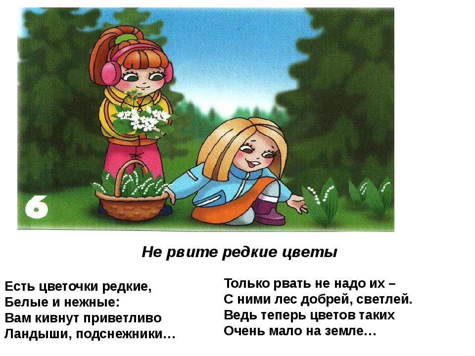 Не рвите редкие цветы Есть цветочки редкие, Белые и нежные: Вам кивнут привет...