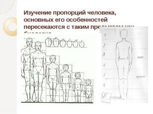 Изучение пропорций человека, основных его особенностей пересекаются с таким п