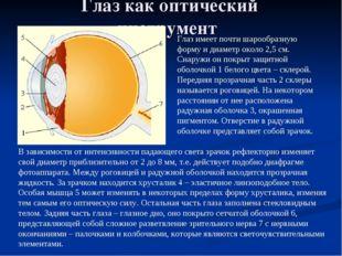 Глаз как оптический инструмент Глаз имеет почти шарообразную форму и диаметр