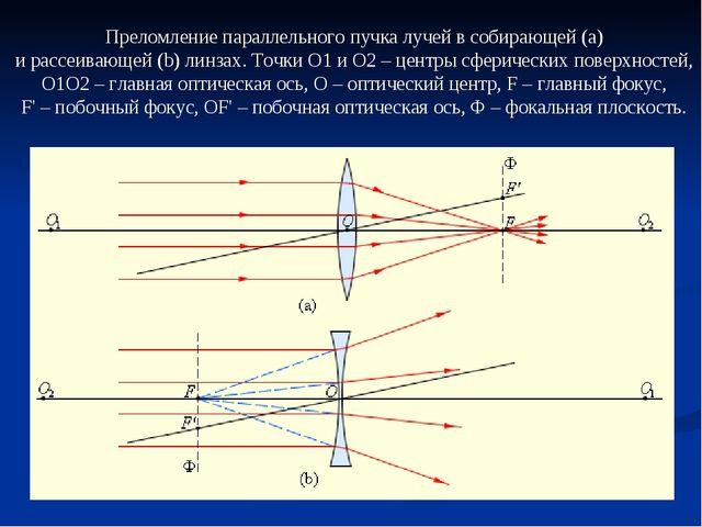 Преломление параллельного пучка лучей в собирающей(a) и рассеивающей(b) лин...