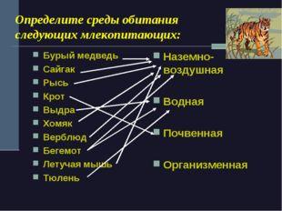 Определите среды обитания следующих млекопитающих: Бурый медведь Сайгак Рысь