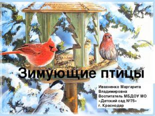 Зимующие птицы Ивахненко Маргарита Владимировна Воспитатель МБДОУ МО «Детски
