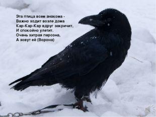 Эта птица всем знакома - Важно ходит возле дома Кар-Кар-Кар вдруг закричит