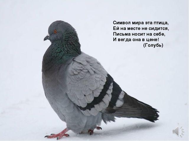 Символ мира эта птица, Ей на месте не сидится, Письма носит на себе, И вегда...