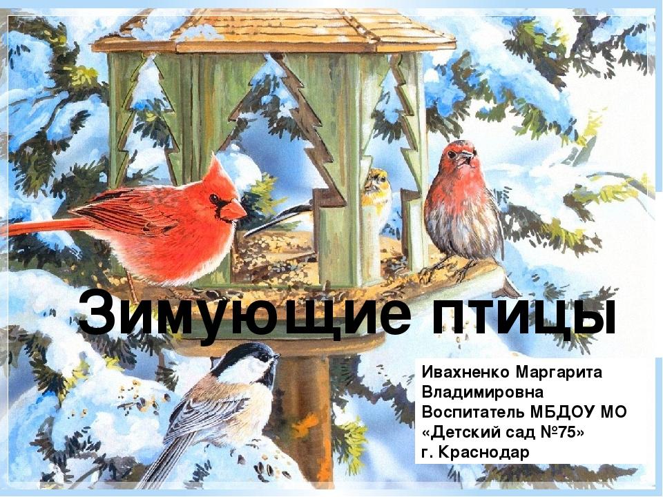 Зимующие птицы Ивахненко Маргарита Владимировна Воспитатель МБДОУ МО «Детски...