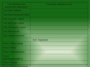 Систематическое положение животного Строение покровов тела Тип Простейшие Тип
