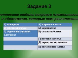 Задание 3 Соотнесите отделы покровов млекопитающих и образования, которые там