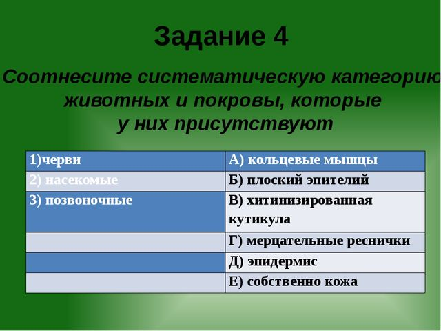 Задание 4 Соотнесите систематическую категорию животных и покровы, которые у...