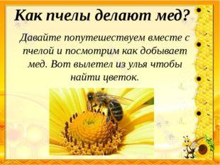 Как пчелы делают мед? Давайте попутешествуем вместе с пчелой и посмотрим как