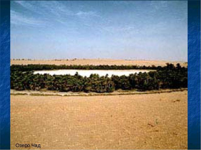 Озеро Чад