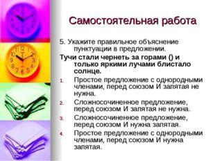 Самостоятельная работа 5. Укажите правильное объяснение пунктуации в предложе