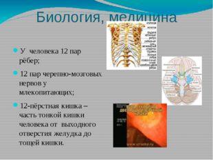 Биология, медицина У человека 12 пар рёбер; 12 пар черепно-мозговых нервов у
