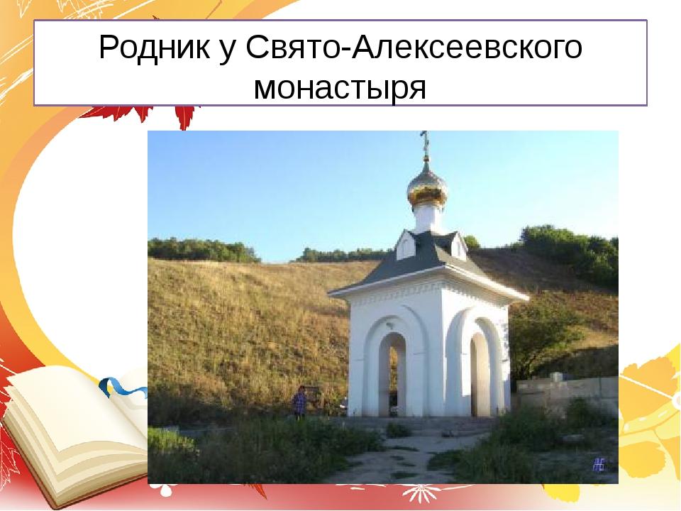 Родник у Свято-Алексеевского монастыря