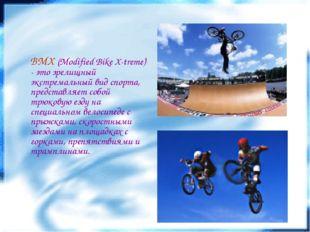 BMX (Modified Bike X-treme) - это зрелищный экстремальный вид спорта, предст