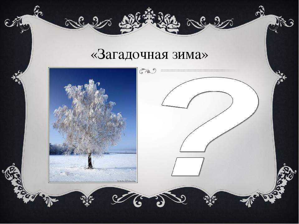«Загадочная зима»