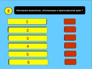 Назовите животное, обитающее в красноярском крае ? Медведь18 Лиса 15 Волк