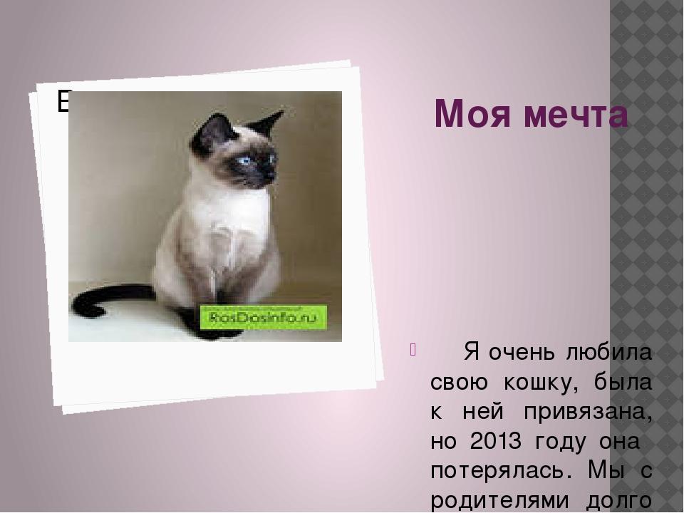 Моя мечта Я очень любила свою кошку, была к ней привязана, но 2013 году она п...