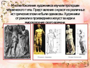 Многие поколения художников изучали пропорции человеческого тела. Представлен