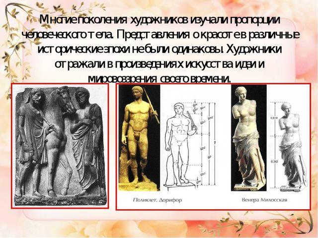 Многие поколения художников изучали пропорции человеческого тела. Представлен...
