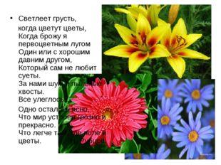 Светлеет грусть, когда цветут цветы, Когда брожу я первоцветным лугом Один ил