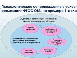 Содействие организации гармоничной психолого-педагогической среды Коррекцион