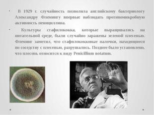 В 1929 г. случайность позволила английскому бактериологу Александру Флемингу