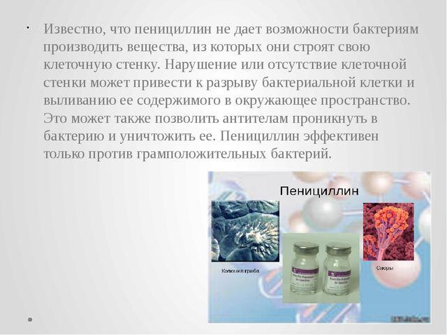 Известно, что пенициллин не дает возможности бактериям производить вещества,...