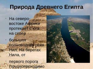 Природа Древнего Египта На северо-востоке Африки протекает с юга на север бол