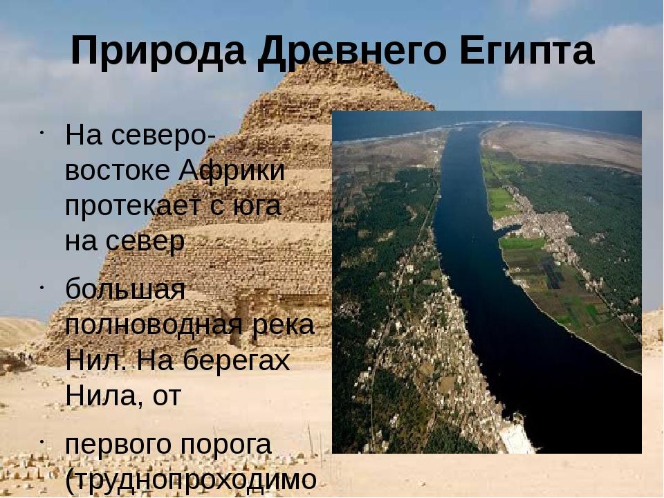 Природа Древнего Египта На северо-востоке Африки протекает с юга на север бол...