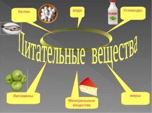 вода Белки Углеводы Витамины жиры Минеральные вещества