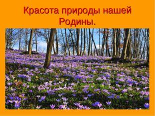 Красота природы нашей Родины.