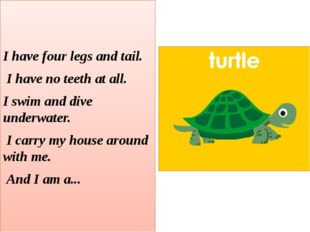 I have four legs and tail. I have no teeth at all. I swim and dive underwate