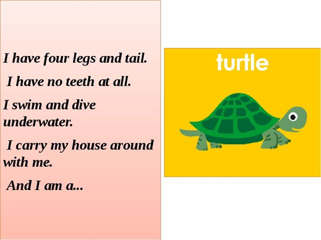 I have four legs and tail. I have no teeth at all. I swim and dive underwate...
