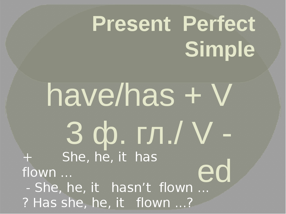 Present Perfect Simple have/has + V 3 ф. гл./ V - ed + I, we, they, you have...