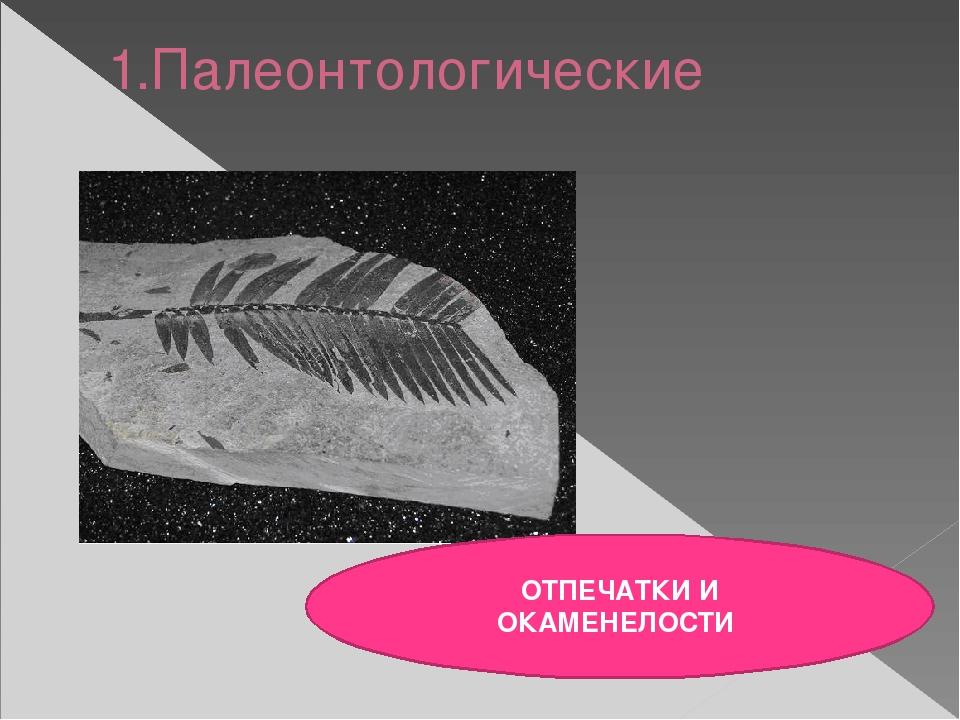 1.Палеонтологические ОТПЕЧАТКИ И ОКАМЕНЕЛОСТИ