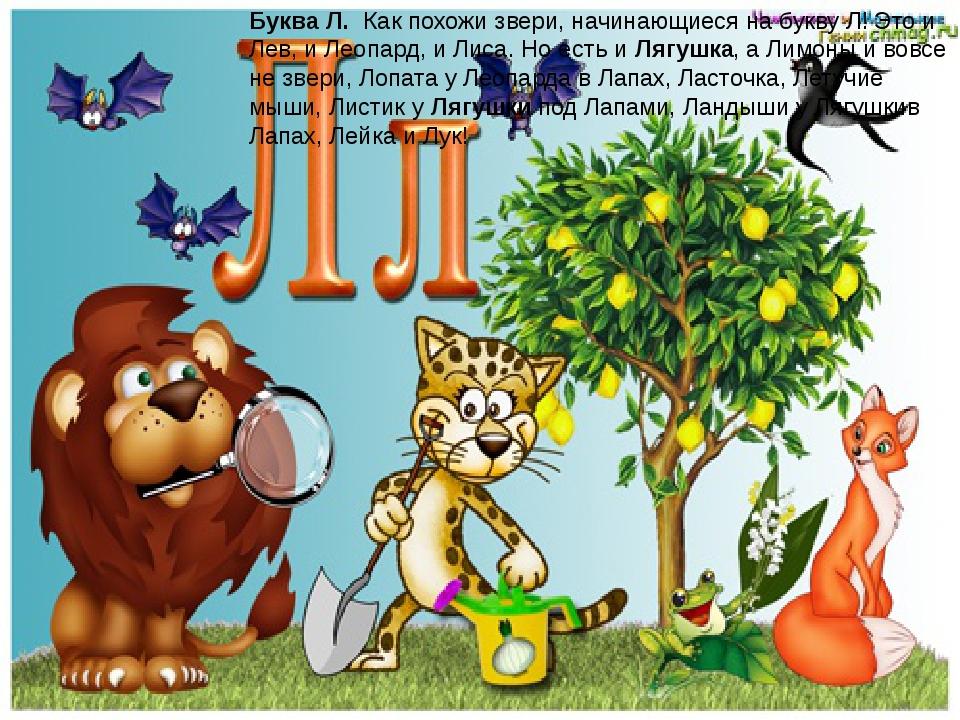 Буква Л. Как похожи звери, начинающиеся на букву Л! Это и Лев, и Леопард, и...