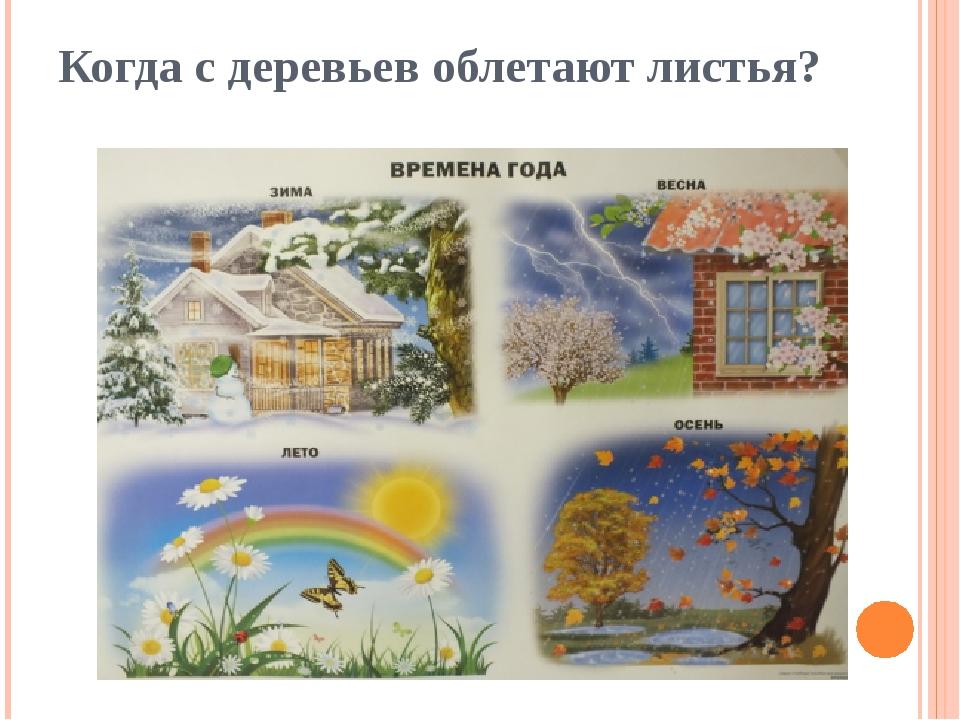 Когда с деревьев облетают листья?