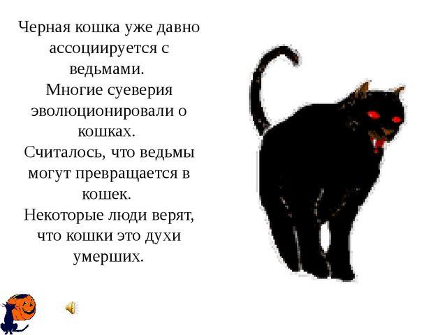 Черная кошка уже давно ассоциируется с ведьмами. Многие суеверия эволюциониро...
