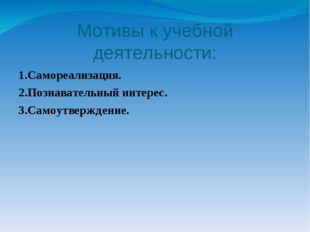 Мотивы к учебной деятельности: 1.Самореализация. 2.Познавательный интерес. 3.