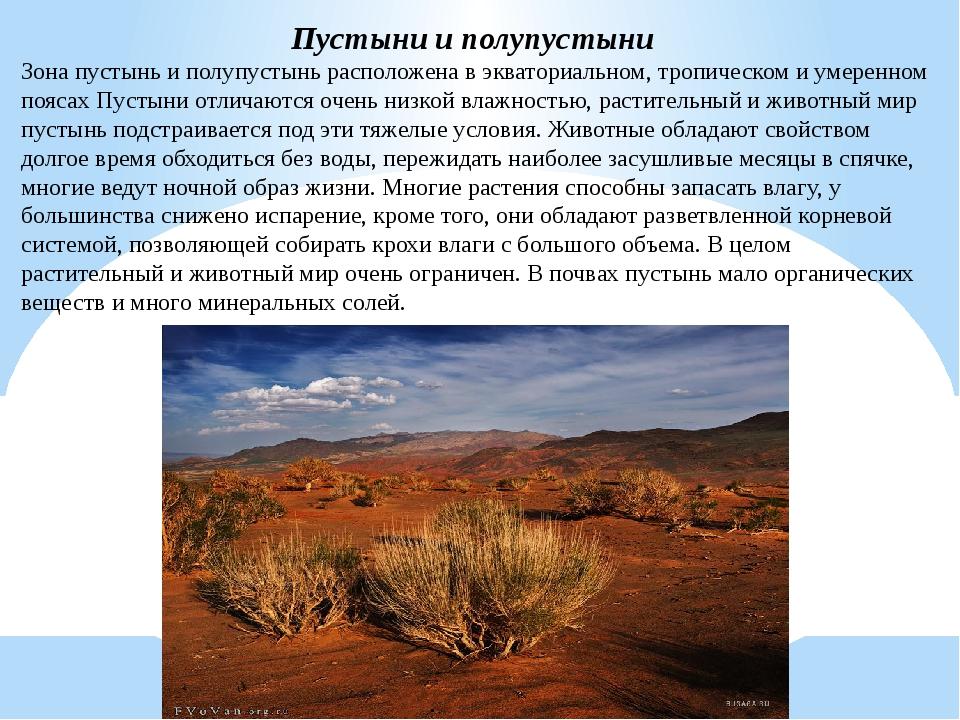 всей моей гифка в презентацию полупустыни выбирайте подходящие