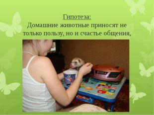 Гипотеза: Домашние животные приносят не только пользу, но и счастье общения,