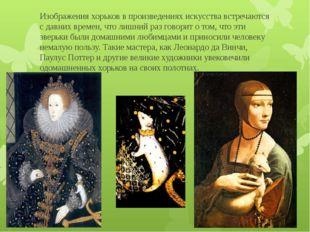 Изображения хорьков в произведениях искусства встречаются с давних времен, чт