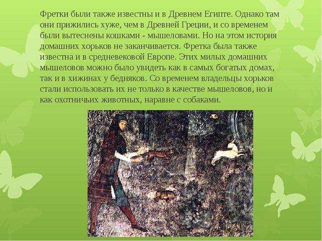 Фретки были также известны и в Древнем Египте. Однако там они прижились хуже,...