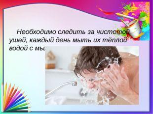 Необходимо следить за чистотой ушей, каждый день мыть их тёплой водой с мылом