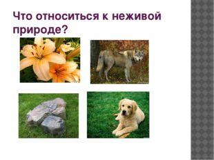 1. Что такое экология? А) наука о животных Б) наука о природном доме В) наук