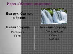 Игра «Живое-неживое» В воде под мостиком виляет хвостиком. Живая природа Нежи
