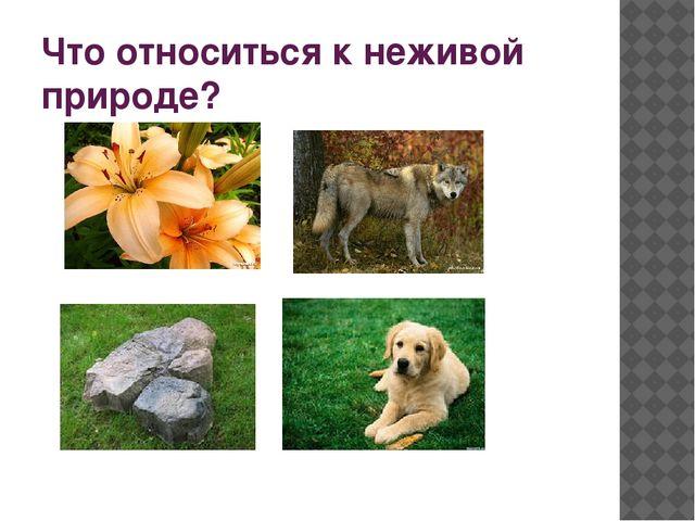 1. Что такое экология? А) наука о животных Б) наука о природном доме В) наук...